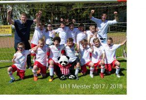 U11 Meister 2017-2018